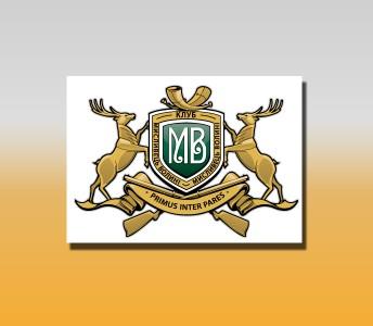 Логотип Мисливці Волині